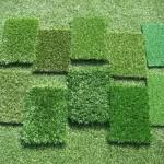 Traitement de pelouse